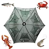Noa Store New Fishing Bait Foldable Net Trap Cast Dip Cage Crab Fish Minnow Crawdad Shrimp