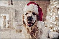 白いきらめきライトツリー9015955(19x27の大人のためのプレミアム1000ピースジグソーパズル)とサンタクロースの帽子をかぶっているクリスマスの日のHDゴールデンレトリバー犬