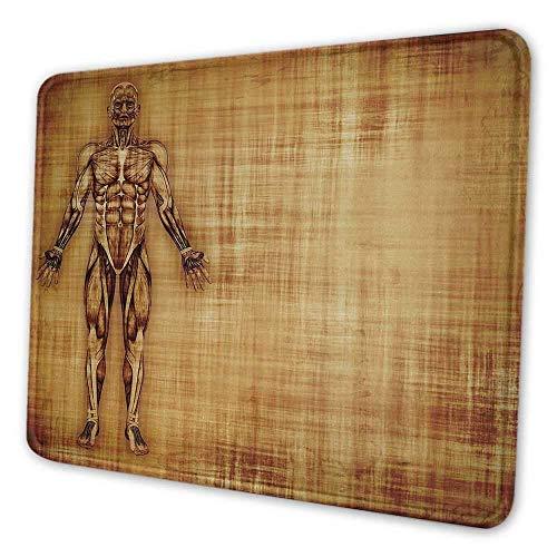Menschliche Anatomie Büro Mauspad Grunge alten Pergament Effekt Skelett Muskeln des menschlichen Körpers Retro-Kunstdruck Mauspad für Frauen Glitter hellbraun, Es