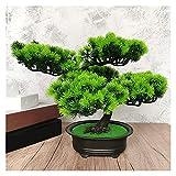 Bonsai Artificial Simulación Acogiendo con satisfacción Pine Bonsai, decoración de la planta artificial de 10 pulgadas de escritorio interior, decoración de la sala de estar en maceta falsa Planta Ar