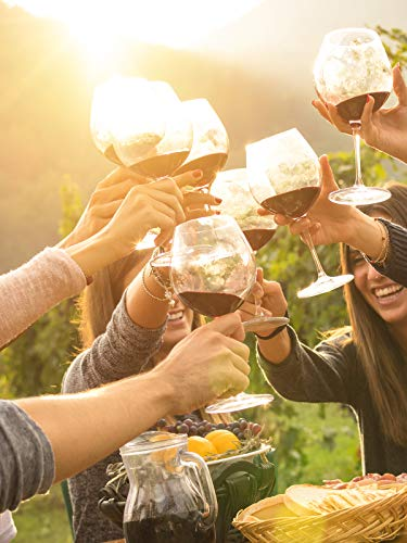 Rotkäppchen Wein Alkoholfrei Spätburgunder - 6