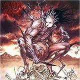 Songtexte von Cannibal Corpse - Bloodthirst