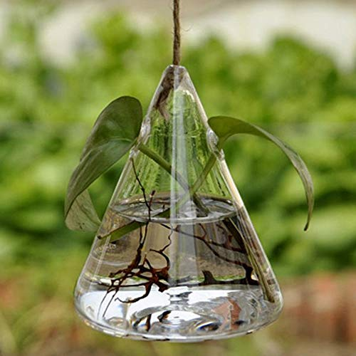 HO-TBO Plante terrarium, suspendu du banquet de mariage du triangle de verre du vase d'hydroponie Début la décoration du jardin Claro Serres jardinage One Size Transparent