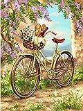 FBDBGRF Pintar por Número Bicicleta Romantica para Adultos Y Niños DIY Kit De Regalo De Pintura Al Óleo con Juego De Pintura Digital para Decoración del Hogar Lienzos para Pintar
