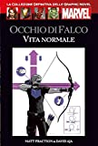 Marvel Graphic NOVEL 24 - Occhio Di Falco - Vita normale