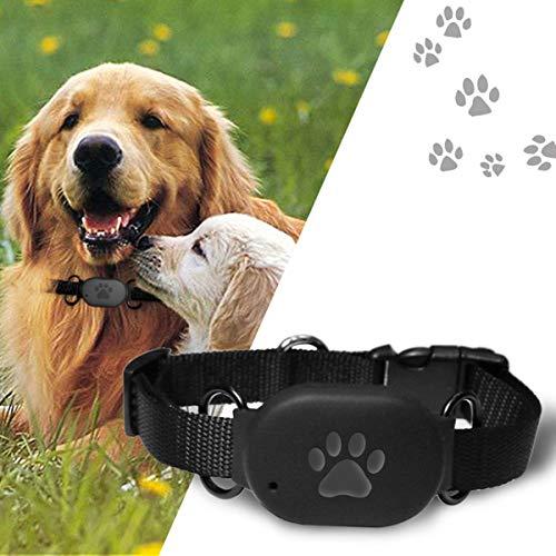 Shjjyp GPS Tracker Für Hunde - Leichter Und Wasserfester Peilsender Mit Unlimitierter Reichweite