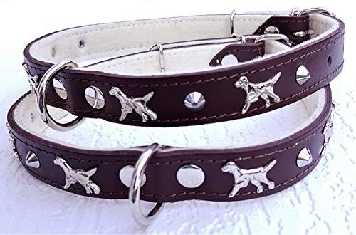 Lusy011 *Setter* Hunde Halsband - Hundehalsband- Halsumfang 45-56cm/25mm, Leder. BRAUN (PL.17-6-300)