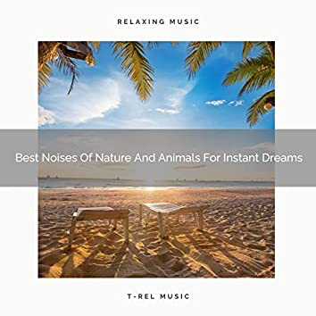 Best Noises Of Nature And Animals For Instant Dreams