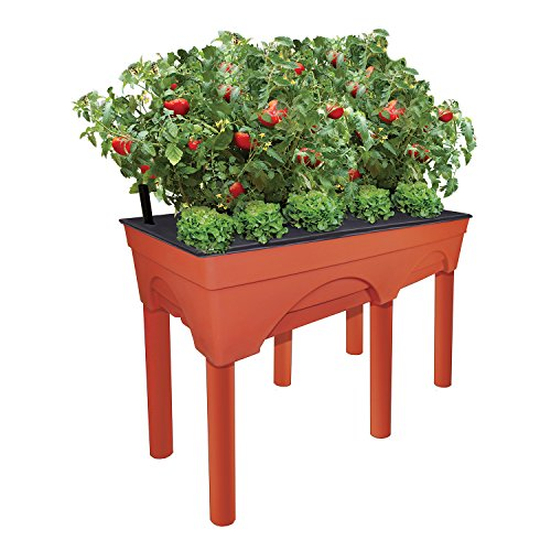 """Emsco Group Big Easy Picker Raised Bed Grow Box – 30"""" Elevated Height – Self-Watering and Improved Aeration – Larger 48"""" x 20"""" Design"""