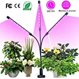 semai Pflanzenlampe LED 30W Pflanzenlicht...