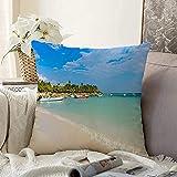 VJSDIUD Cojín Decorativo Cuadrado Funda de cojín Blue Paradise Beach Cancún Costa Akumal Turismo Tortuga Caribe Quintana Naturaleza Deportes Recreación Funda de Almohada para sofá Coche Deco