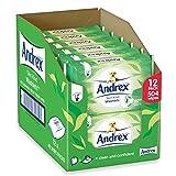 Andrex Washlets Flushable Toilet Tissue Wipes, Skin Kind - Pack of 12