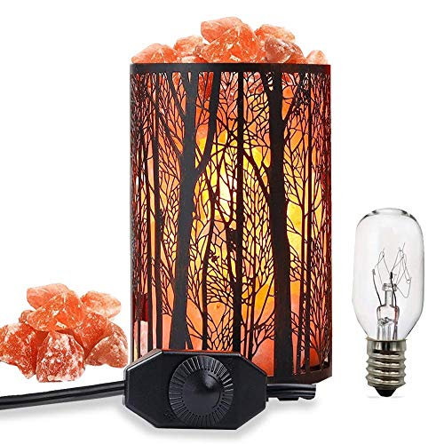 Salt Lamps, Natural Himalayan Salt Lamp, Forest Salt Lamp, Salt Night Lights, Salt Crystal Light with Retro Metal Basket Lamp and Extra 25W Lamp Bulbs