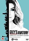 Greys Anatomy Season 13 (6 Dvd) [Edizione: Regno Unito]