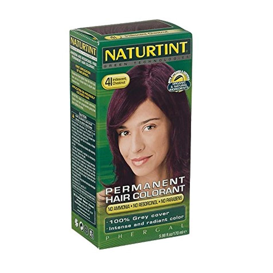 枕図書館唯一Naturtint Hair Colour Intense Iridescent Chestnut (Pack of 6) - Naturtintの髪の色の強い虹色の栗 (x6) [並行輸入品]