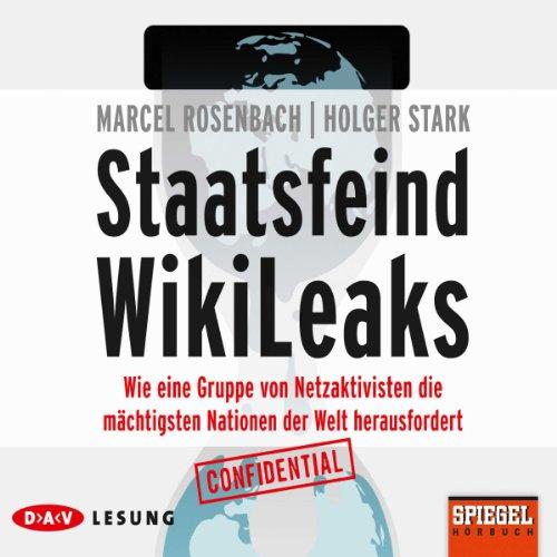Staatsfeind Wikileaks Titelbild
