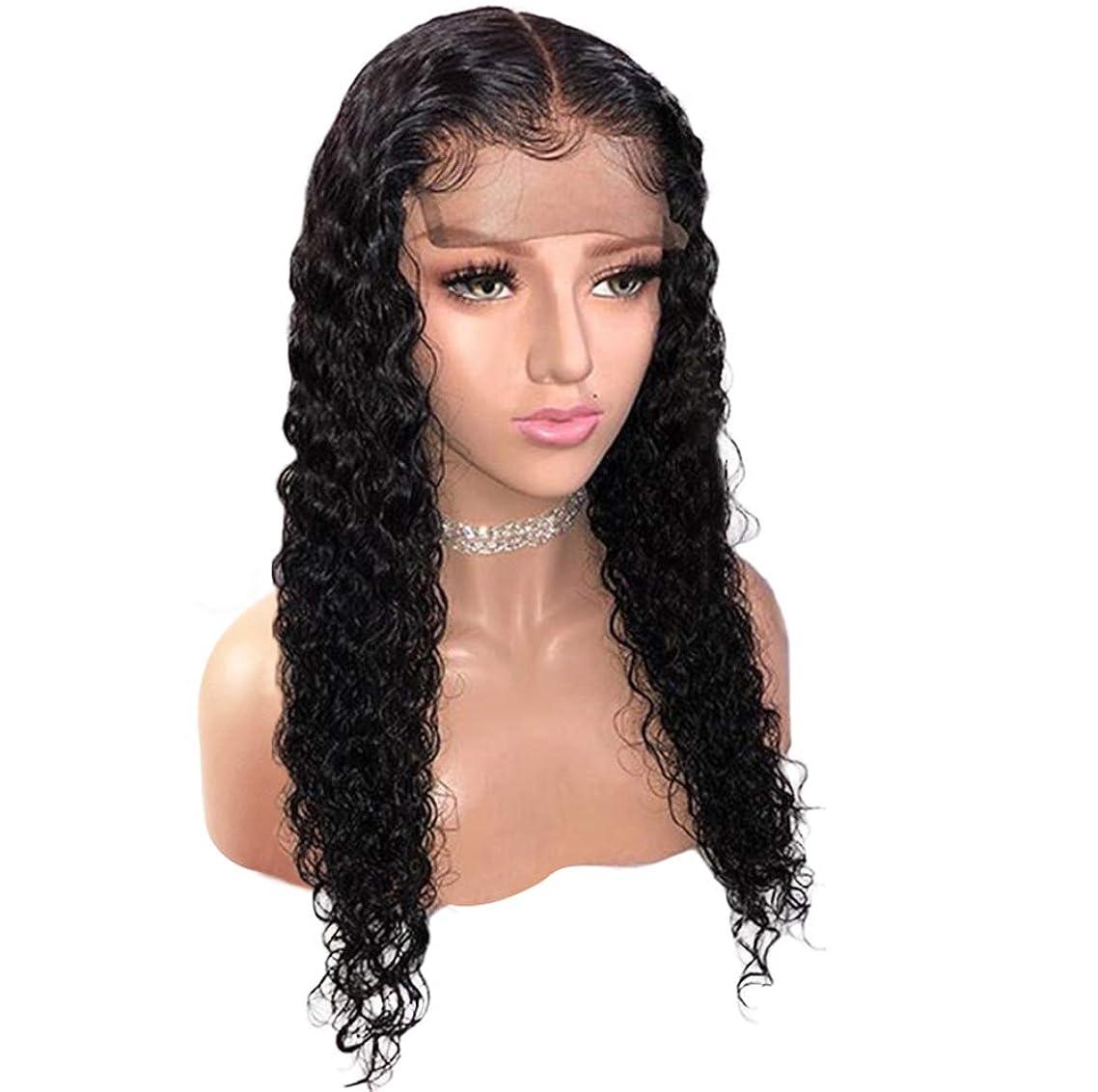 ボード寄付シーサイド女性ブラジルフロントレースかつら人間の髪の毛130%合成合成かつら耐熱毛髪のかつら黒24インチ