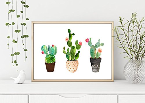 Print Wandbild Poster Bild Wanddeko Kaktus Kaktus Kaktus A4