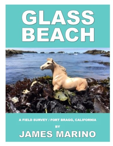 Glass Beach: A Field Survey / Fort Bragg, California