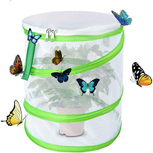 Yeelan Butterfly Habitat Pliable Bug Catcher Net Mesh Insectes Plant Cage Pop-up for Kids/Child/Toddler Catching Crickets/Firefly/Caterpillars/Ladybird/Fish/Laundry Bag (Cylindrical Large, 30x35cm)