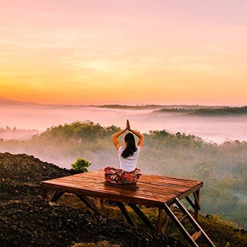 Deep Sleep Music Experience, Healing Yoga Meditation Music Consort & Studying Music
