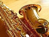 Immagine 2 sax alto mib conn selmer