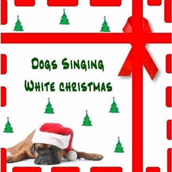 Dogs Singing White Christmas
