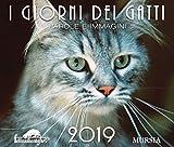 I giorni dei gatti. Calendario 2019: I giorni del gatto....