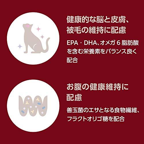 ベッツワンプレミアム毎日の健康維持成猫用インドアチキン2kg