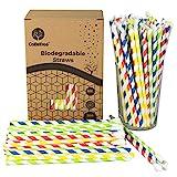 GoBeTree 300 Pajitas de Papel biodegradables Colores Variados con Forma de Cuchara, Pajita...