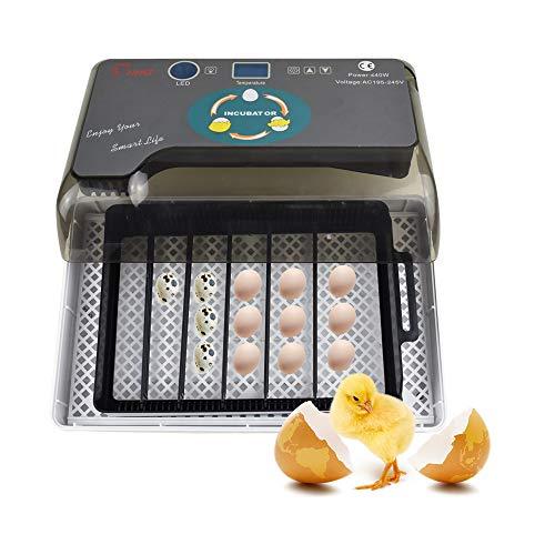 Tenlso Incubatrice per Uova Automatica,Incubatrice Uova Gallina Professionale con Display LCD e Controllo Automatico di Temperatura,Egg Incubator Ideale per Uova di Gallina,Uccelli e Rettili,Grigio