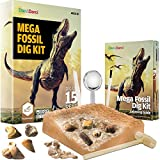 Mega Fossil Dig Kit - Dig Up 15 Real Fossils, Dinosaur Bones, Shark Teeth & More - Dinosaur Digging Kids Activities - Science Toys for Kids - Dinosaur Toys - Gifts for Boys and Girls
