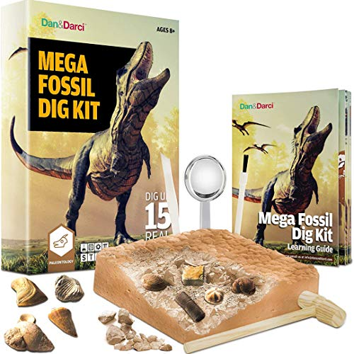 Product Image of the Mega Fossil Dig