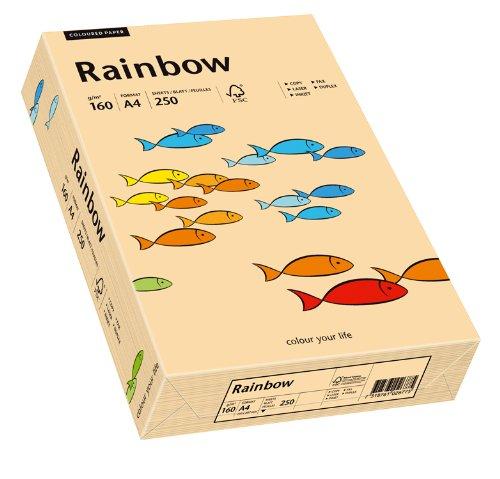 inapa Papyrus 88042505 Drucker-/Kopierpapier bunt, Bastelpapier: Rainbow 160 g/m², A4, 250 Blatt, Matt, Farbe - Lachs