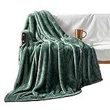 Exclusivo Mezcla Plush Fuzzy Large Fleece Throw Blanket ( 50' x 70', Celadon)- Soft, Warm& Lightweight