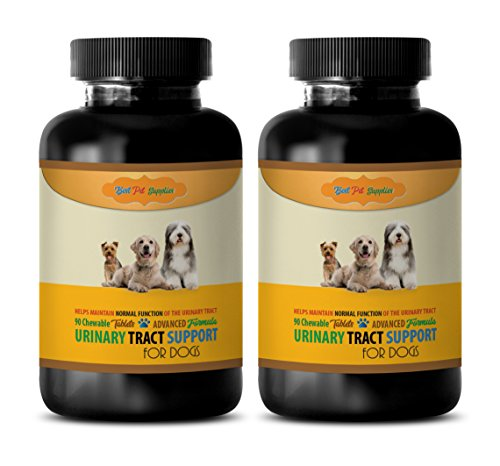 BEST PET SUPPLIES LLC Dogs Urinary Tract Health - Dogs Urinary Tract Support - Maintain Health Function - CHEWABLE - Cranberry Dog Pills - 180 Treats (2 Bottles)