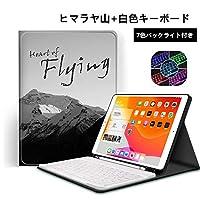 iPad 10.2 インチ (アイパッド10.2インチ) 第7世代キーボードケース アップル ペンシル 収納可能 7色 バックライト iPad 10.2 インチ アイパッド キーボード ケース ペンホルダー内蔵 バックライト付き 2019年型 iPad 7インチ キーボード ケース ペンホルダー付き スマート キーボード付き ペン 収納PODITAGI (2019新型iPad(10.2インチ), ヒマラヤ+白色キーボード)