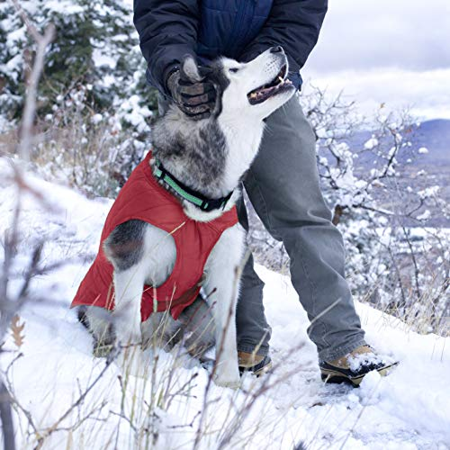 Kurgo Loft Jacket, Reversible Dog Coat, Dog Coat for Cold Weather, Water-Resistant Dog Jacket with Reflective Trim, Red/Grey, Small