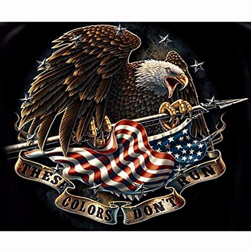 DIY 5D Diamond Painting Kits for Adults Full Drill Embroidery Paintings Rhinestone Pasted DIY Painting Cross Stitch Arts Crafts for Home Wall Decor 30x40cm/11.8×15.7Inches (Eagle American Flag)