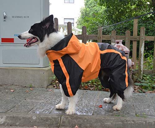 lovelonglong Border Collie - Chubasquero con capucha para perro, impermeable, con capucha, transpirable, 4 pies, cuatro patas, para Border Collies, perros grandes, naranja, L-M+
