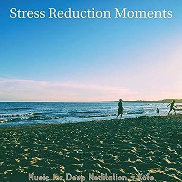 Music for Deep Meditation - Koto