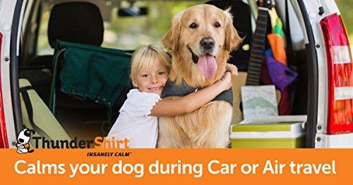 Thundershirt Sport Dog Anxiety Jacket | Vet Recommended Calming Solution Vest for Fireworks, Thunder, Travel, Separation | Platinum, Large