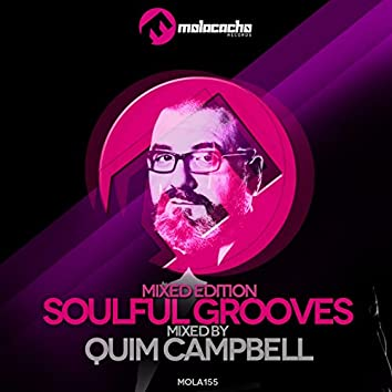 Soulful Grooves (Mixed Edition)