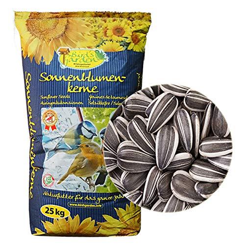 Vogelfood 10 kg Sonnenblumenkerne gestreift Wildvogelfutter Vogelfutter Ernte 2020