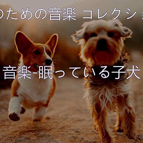 犬のための音楽 コレクション