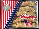 American Ginseng from Wisconsin, Ginseng Root / Ginseng Slice / Ginseng Tea, 4 Ounce (Jumbo Long Roots)