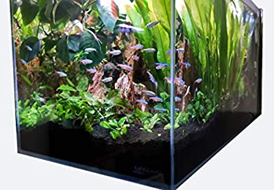 Lifegard Aquatics Lifegard Ultra Low Iron Glass Crystal Aquarium with Built-in Side Filter 45° Beveled Edge 4.1 Gallons, Clear