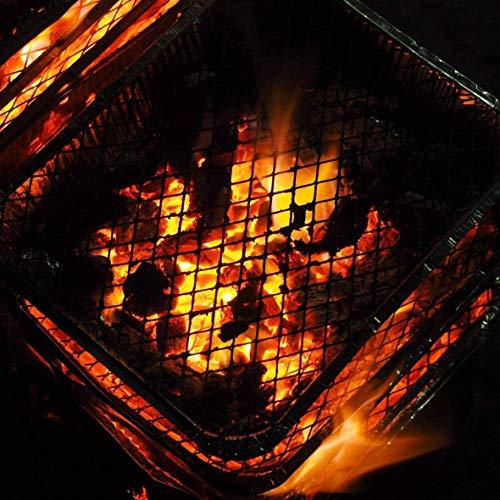 516JivkkapL. SL500  - Einweggrill - Praktischer Einweggrill mit Holzkohle und Anzünder - Grill für Wandern, Grill, Picknick, Camping, Strand (4)