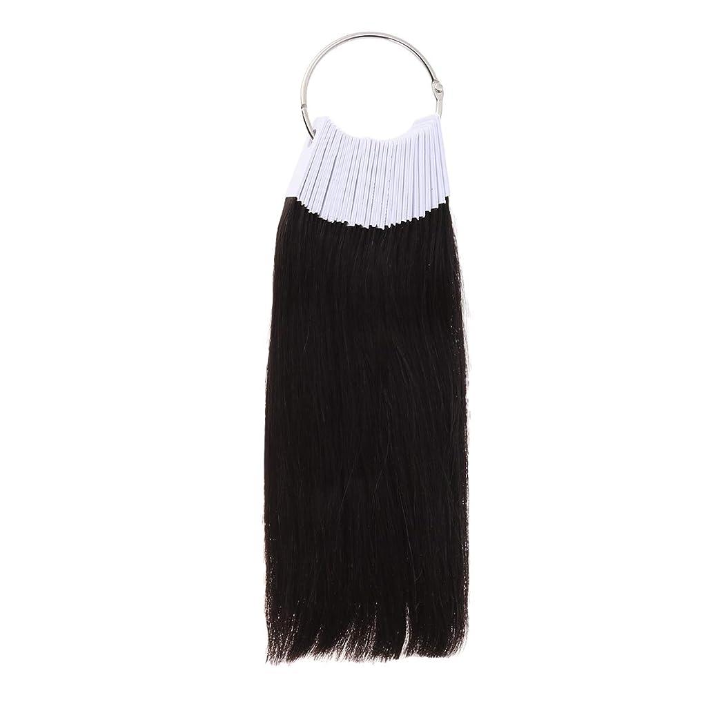 コンデンサー三十パパLURROSE 30PCSヘアカラーリング人間の髪の色見本サロン用カラーサンプル(9度色)