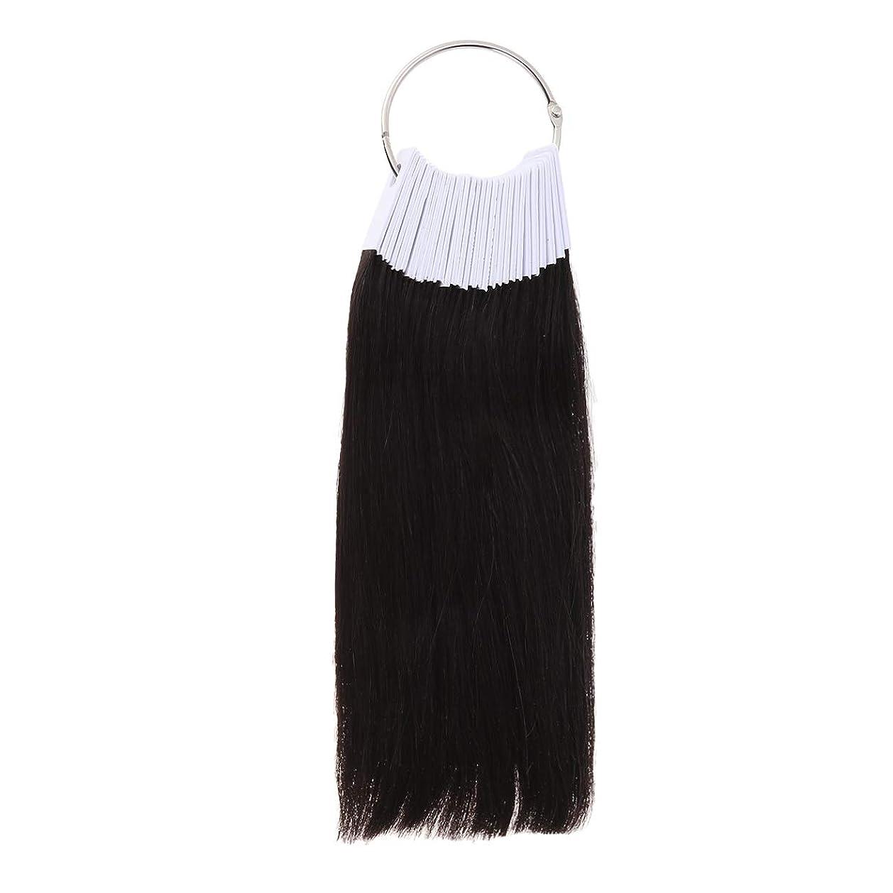 マラドロイト霜眠っているLURROSE 30PCSヘアカラーリング人間の髪の色見本サロン用カラーサンプル(9度色)